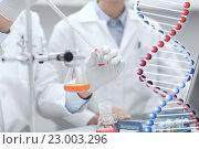 Купить «close up of scientists filling test tube in lab», фото № 23003296, снято 4 декабря 2014 г. (c) Syda Productions / Фотобанк Лори