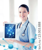 Купить «female doctor with tablet pc and molecules», фото № 23003888, снято 18 мая 2013 г. (c) Syda Productions / Фотобанк Лори