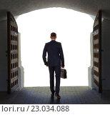 Купить «Businessman has found exit, concept», фото № 23034088, снято 11 мая 2016 г. (c) Владимир Мельников / Фотобанк Лори