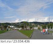 Купить «Олимпийский парк Сочи, пальмы и зеленые газоны, люди на дорожках, голубое небо с белыми облаками», фото № 23034436, снято 1 июня 2016 г. (c) DiS / Фотобанк Лори