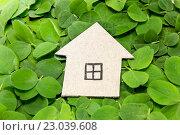 Купить «Картонный домик на листьях клевера. Строительство экологичного жилья», фото № 23039608, снято 5 июня 2016 г. (c) Наталья Осипова / Фотобанк Лори
