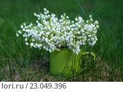 Ландыши в зеленой кружке. Стоковое фото, фотограф Семенова Ольга Евгеньевна / Фотобанк Лори