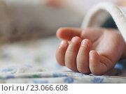 Купить «Детская рука крупным планом», фото № 23066608, снято 10 июня 2016 г. (c) Константин Колосов / Фотобанк Лори