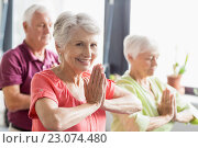 Купить «Seniors doing yoga with closed eyes», фото № 23074480, снято 2 марта 2016 г. (c) Wavebreak Media / Фотобанк Лори