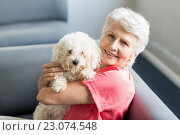 Купить «Senior woman holding a dog», фото № 23074548, снято 2 марта 2016 г. (c) Wavebreak Media / Фотобанк Лори