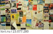 Купить «Доска с объявлениями на стене. Массачусетский технологический институт, Кембридж, США», видеоролик № 23077280, снято 25 апреля 2016 г. (c) FMRU / Фотобанк Лори