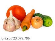 Купить «Vegetables composition.», фото № 23079796, снято 1 октября 2015 г. (c) Юрий Брыкайло / Фотобанк Лори