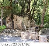 Купить «Церковь Святой Феодоры (Греция, Пелопоннес, ном Аркадия)», фото № 23081192, снято 11 июня 2016 г. (c) Татьяна Ляпи / Фотобанк Лори