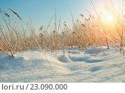 Купить «Зимний пейзаж», фото № 23090000, снято 4 июня 2020 г. (c) Зезелина Марина / Фотобанк Лори