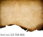 Купить «Текстуры старой бумаги с обхоженными краями», фото № 23104464, снято 23 июля 2019 г. (c) Андрей Кузьмин / Фотобанк Лори