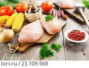 Купить «Куриное филе», фото № 23109568, снято 16 июня 2016 г. (c) Надежда Мишкова / Фотобанк Лори