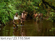 Купить «Life of Bayaka Pygmies in the equatorial rainforest, Central African Republic, Africa», фото № 23110564, снято 9 октября 2015 г. (c) age Fotostock / Фотобанк Лори