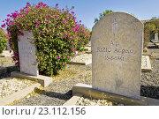 Купить «Italian war cemetery, Keren, Eritrea.», фото № 23112156, снято 6 марта 2010 г. (c) age Fotostock / Фотобанк Лори