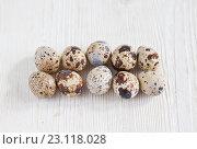 Купить «Перепелиные яйца на светлом деревянном фоне», фото № 23118028, снято 19 июня 2016 г. (c) Юлия Бочкарева / Фотобанк Лори