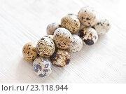 Купить «Перепелиные яйца на светлом деревянном фоне», фото № 23118944, снято 19 июня 2016 г. (c) Юлия Бочкарева / Фотобанк Лори
