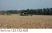 Купить «Уборка урожая зерновых культур», видеоролик № 23132428, снято 20 апреля 2016 г. (c) ActionStore / Фотобанк Лори