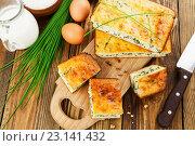 Купить «Пирог с зеленым луком», фото № 23141432, снято 22 июня 2016 г. (c) Надежда Мишкова / Фотобанк Лори