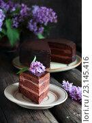 Кусок шоколадного торта украшенеый сиренью. Стоковое фото, фотограф Оксана Голева / Фотобанк Лори