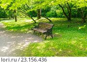 Скамейка в парке (2016 год). Стоковое фото, фотограф Sergey Borisov / Фотобанк Лори