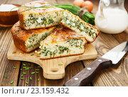 Купить «Домашний пирог с зеленым луком и яйцами на разделочной доске», фото № 23159432, снято 26 июня 2016 г. (c) Надежда Мишкова / Фотобанк Лори