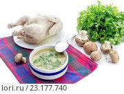 Купить «Грибной суп и варенная курица на белом фоне», фото № 23177740, снято 28 июня 2016 г. (c) Татьяна Ляпи / Фотобанк Лори