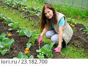 Купить «Девушка-садовод улыбается и рыхлит землю на грядке с капустой на дачном участке», фото № 23182700, снято 19 июня 2016 г. (c) Максим Мицун / Фотобанк Лори