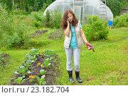 Купить «Девушка - садовод говорит оп телефону на дачном участке», фото № 23182704, снято 19 июня 2016 г. (c) Максим Мицун / Фотобанк Лори
