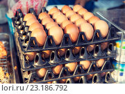 Купить «fresh eggs on tray at asian street market», фото № 23186792, снято 7 февраля 2015 г. (c) Syda Productions / Фотобанк Лори