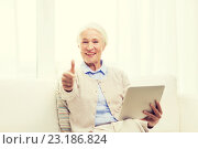 Купить «senior woman with tablet pc showing thumbs up», фото № 23186824, снято 10 июля 2015 г. (c) Syda Productions / Фотобанк Лори