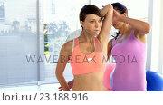 Купить «Fitness trainer helping a woman to stretch out», видеоролик № 23188916, снято 29 мая 2020 г. (c) Wavebreak Media / Фотобанк Лори
