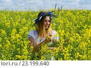 Красивая девушка в венке из васильков на цветущем рапсовом поле. Стоковое фото, фотограф Ольга Коцюба / Фотобанк Лори
