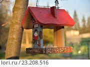 Кормушка для птиц - домик в городском Парке Победы (2016 год). Стоковое фото, фотограф Максим Мицун / Фотобанк Лори