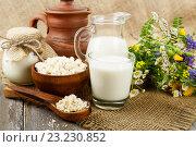 Молочные продукты и букет полевых цветов на столе на столе. Стоковое фото, фотограф Надежда Мишкова / Фотобанк Лори