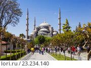 Купить «Стамбул, вид на площадь Султанахмет в солнечный летний день, Турция», фото № 23234140, снято 12 мая 2015 г. (c) Наталья Волкова / Фотобанк Лори