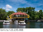 Купить «Хабаровск, городские пруды, люди катаются на катамаранах», эксклюзивное фото № 23235088, снято 31 мая 2016 г. (c) Катерина Белякина / Фотобанк Лори