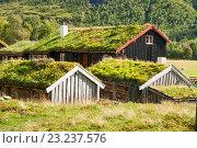 Купить «Традиционные норвежские дома с травяными крышами, Иннердален, Норвегия», фото № 23237576, снято 11 августа 2011 г. (c) Юлия Бабкина / Фотобанк Лори