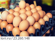 Купить «fresh eggs on tray at asian street market», фото № 23260148, снято 7 февраля 2015 г. (c) Syda Productions / Фотобанк Лори