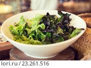 Купить «bowl of green salad lettuce at asian restaurant», фото № 23261516, снято 15 февраля 2015 г. (c) Syda Productions / Фотобанк Лори
