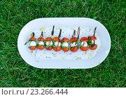 Итальянская закуска из помидоров черри, сыра моцарелла и базилика на белой тарелке на зеленой траве - Italian Snack. Стоковое фото, фотограф Илья Беспальчиков / Фотобанк Лори