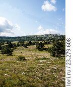 Купить «Природа Крыма», фото № 23279608, снято 15 июля 2015 г. (c) Светлана Овчинникова / Фотобанк Лори