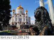 Купить «Храм Христа Спасителя, Москва», фото № 23289216, снято 9 июля 2016 г. (c) Константин Кург / Фотобанк Лори