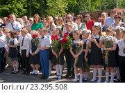Купить «Школьники начальных классов на торжественной линейке», эксклюзивное фото № 23295508, снято 25 мая 2016 г. (c) Svet / Фотобанк Лори