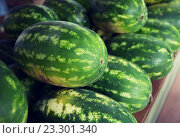 Купить «close up of watermelon at street farmers market», фото № 23301340, снято 27 июля 2015 г. (c) Syda Productions / Фотобанк Лори