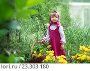 Маленькая деревенская девочка в народном костюме с корзиной. Стоковое фото, фотограф Tanya Ischenko / Фотобанк Лори