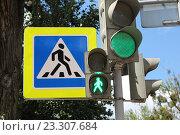 Купить «Зеленый свет светофора», эксклюзивное фото № 23307684, снято 20 июля 2016 г. (c) Шуньята Антонова / Фотобанк Лори