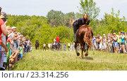 Купить «Девочка-казачка скачет на лошади», фото № 23314256, снято 18 июня 2016 г. (c) Акиньшин Владимир / Фотобанк Лори