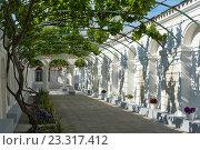 Купить «Караимские кенассы. Виноградный дворик. Евпатория, Крым», эксклюзивное фото № 23317412, снято 27 мая 2016 г. (c) Александр Щепин / Фотобанк Лори