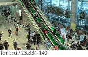 Купить «Люди в международном аэропорту Домодедово. Москва», видеоролик № 23331140, снято 20 февраля 2015 г. (c) Курганов Александр / Фотобанк Лори