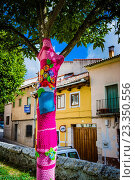 Купить «Multicolored crocheted tree street art. Cuéllar, Segovia, Castilla y León, Spain, Europe.», фото № 23350556, снято 18 июня 2016 г. (c) age Fotostock / Фотобанк Лори