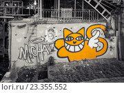 Купить «Парижское граффити с оранжевым котом», фото № 23355552, снято 19 июля 2016 г. (c) Илья Бесхлебный / Фотобанк Лори